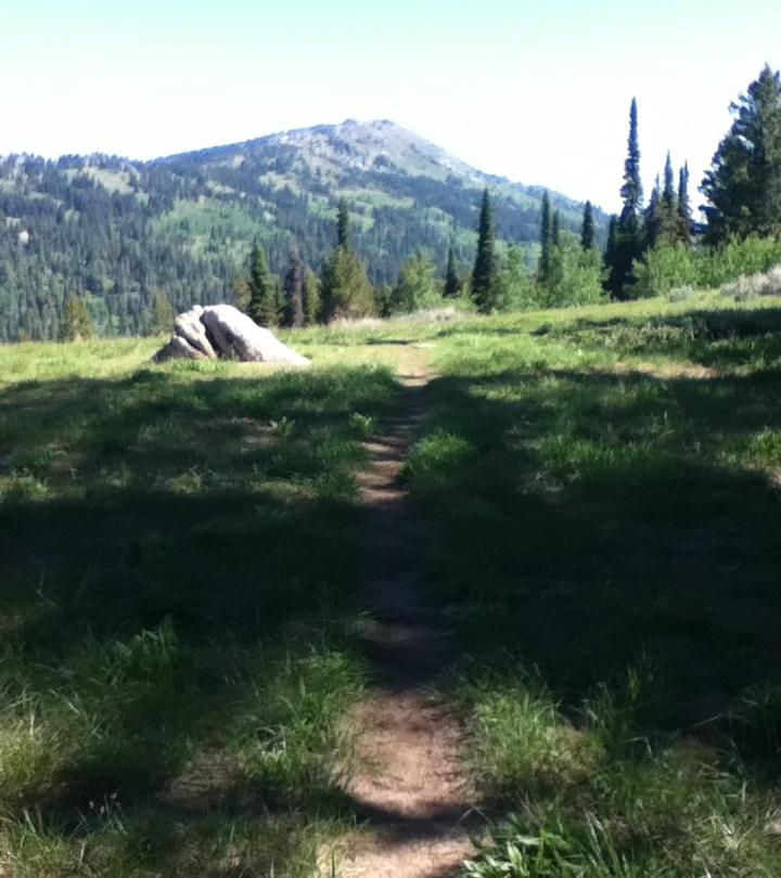 w mnt trail 3 cropped
