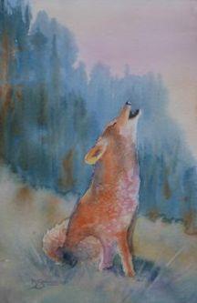 Swanson coyote
