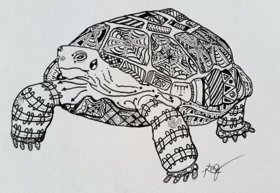 Anasazi Desert Tortoise